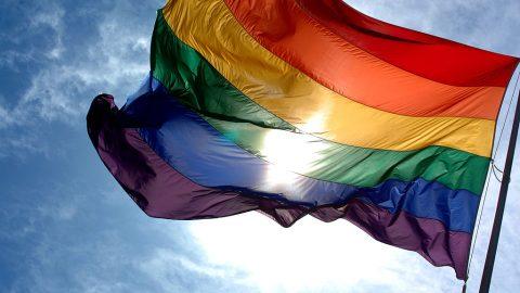 rainbowprideflag